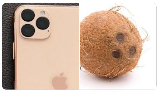 iphone coconut