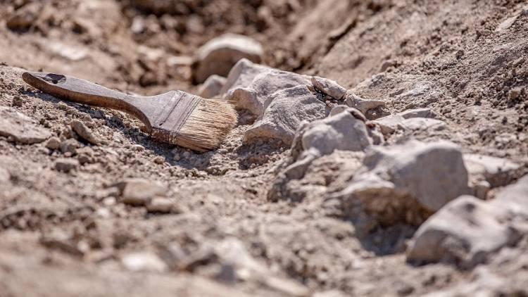 archeology australia