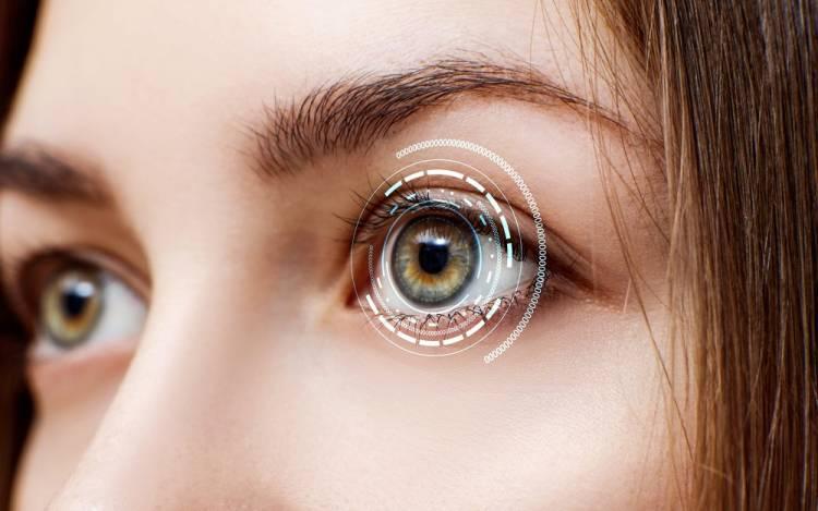 eye cells