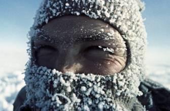 oronavirus in polar
