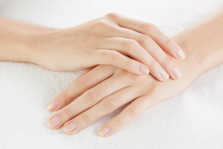 corona fingers length